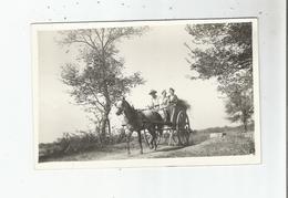 EN CAMARGUE CARTE PHOTO AVEC ARLESIENNES ET GARDIAN (ATTELAGE CHEVAL) PHOTO GEORGE ARLES - France