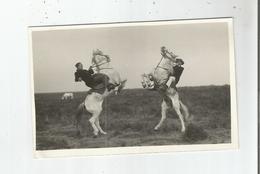 EN CAMARGUE CARTE PHOTO AVEC GARDIANS (CHEVAUX CABRES) PHOTO GEORGES ARLES - Frankreich