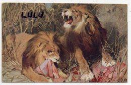ANIMAUX 121 : Lions En Pleins Repas - Lions