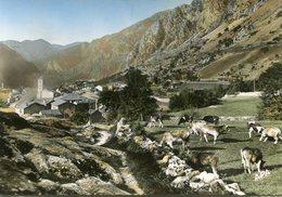 ANDORRE(ANDORRA LA VELLA) VACHE - Andorre