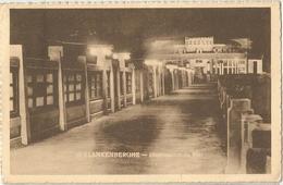 8Eb-174: BLANKENBERGE  Illumination Du Pier  > Antwerpen - Blankenberge