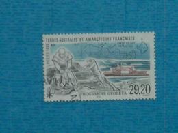 T.A.A.F.- Timbre Oblitéré  N° 245 - Tierras Australes Y Antárticas Francesas (TAAF)