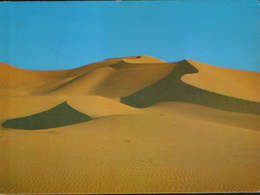 Algeria - Postcard Circulated 1984 - The Fascinating South - 2/scans - Other