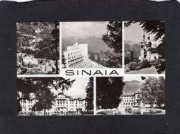 84198    Romania,  Sinaia,  NV - Roumanie