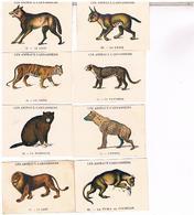 PRODUITS CASINO ..9  LES ANIMAUX CARNASSIERS  ...CX39 - Autres