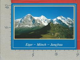 CARTOLINA VG SVIZZERA - Mannlichen - Berner Oberland - Eiger Monch Jungfrau - 10 X 15 - ANN. 2000 - BE Berne