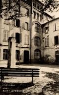 SAINT THEODARD - France