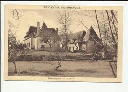 15 . ROUMEGOUX . LE CHATEAU - Frankrijk