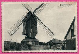 Cp Dentelée - Lummen - Molen En Omgeving - Limburg - Moulin à Vent - Animée - Em. BEERNAERT - Lummen