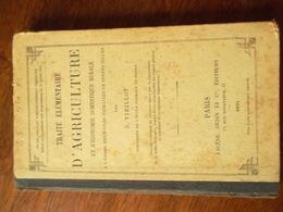 TRAITE ELEMENTAIRE D'AGRICULTURE ET D'ECONOMIE DOMESTIQUE RURALE / J.VIEILLOT - Bücher, Zeitschriften, Comics