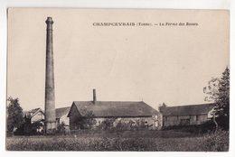 89  CHAMPCEVRAIS   La Ferme Des Rosses - France