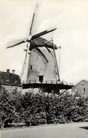 Molen Korenbloem, Sommelsdijk, Windmill, Real Photo - Watermolens