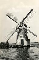 Molen De Laeck, Warmond, Poldermolen, Windmill, Real Photo - Watermolens