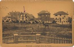 CPA - Belgique -  Flandre Occidentale - Westende - Cottages Dans Les Dunes - Westende