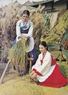 AL48 Korea - Harvest Time - Korea, South