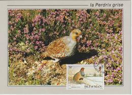 Man Carte Maximum 1988 Oiseaux Perdrix 387 - Isle Of Man