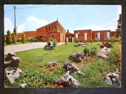 TOSCANA -RIETI -TORRICELLA IN SABINA -F.G. LOTTO N°458 - Rieti
