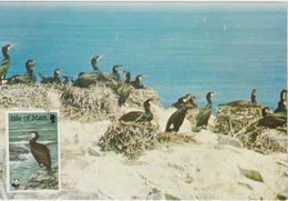 Man Carte Maximum 1989 Oiseaux Cormoran 410 - Isle Of Man