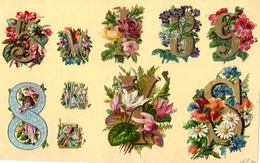 CHIFFRES ET LETTRES FLEURIES. Planche De   . H= 12 X 20  Cm - Fleurs