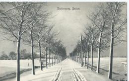 Bedum - Stationsweg - Uitg. Van W. Haan - 1907 - Pays-Bas