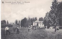 CPA - Florenville - Le Mémabile - Institut Du Dr. Paul Famenne - NELS - 1922 - Florenville