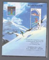 Exposition Néo-zélandaise De Films Hong Kong Sports Slalom Aviation 1995 Bloc - Nuova Zelanda