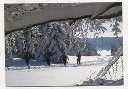 SKI / SKIING - AK 343920 Langlauf Auf Dem Heuberg - Winter Sports