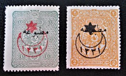 SURCHARGES 6 ETOILES ET 1 CROISSANT 1915 - TIMBRES POUR JOURNAUX - NEUFS * - YT 213/14 - 1858-1921 Osmanisches Reich
