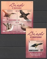 I545 2016 MONTSERRAT FAUNA BIRDS OF MONTSERRAT 1BL+1KB MNH - Birds