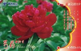 TARJETA TELEFONICA DE CHINA. FLORES - FLOWERS. GXLZ-2005-T1(2-1). (381) - Flores