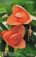 TARJETA TELEFONICA DE CHINA. FLORES - FLOWERS. GXTNN-2004-43(5-4). (383) - Flores