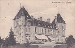 CPA - Château Du Bois D'Arlon - NELS - Envoyé De France (Longwy) Vers Le Luxembourg - Aarlen