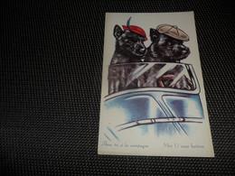 Chiens ( 23 )  Chien  Hond   - Coloprint  17 - Chiens