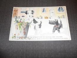 Chiens ( 28 )  Chien  Hond   - Coloprint  213 - Chiens