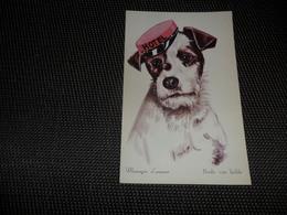 Chien ( 42 )    Hond   -  Coloprint  30 - Chiens