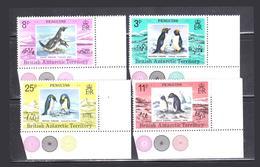 Stamp Antarctic 1980 Penguins - Pinguini