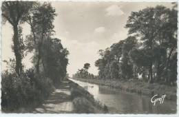 Ruminghem-Le Canal De Calais (CPSM) - Andere Gemeenten