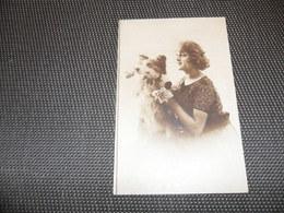 Chien ( 67 )    Hond - Chiens