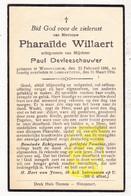DP Pharaïlde Willaert ° Wondelgem Gent 1888 † Lombardsijde Middelkerke 1934 X P. DeVleeschauwer - Images Religieuses