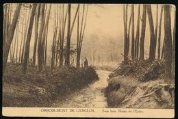 MONT DE L'ENCLUS  -- SOUS BOIS  ROUTE DE L'ENFER - Kluisbergen