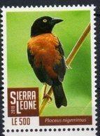 SIERRA  LEONE, 2018, BIRDS, BLACK WEAVER,  1v - Birds
