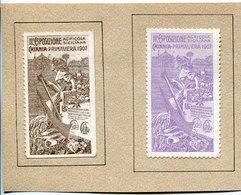 42928 Italia, 2 Erinnophily 1907 Catania, Esposizione Agricola Siciliana,  Sicilian Agricultural Exhibition - Erinnophilie