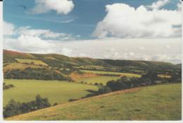 Postcard - The Longmynd From The West - Posted 12th July 1995very Good - Non Classificati