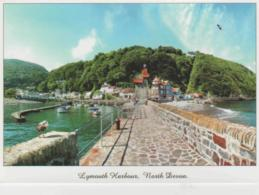 Postcard - Lynmouth  From The Pier, Lynmouth Exmoor - Unused Very Good - Postcards