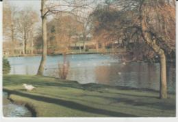 Postcard - Nelson - Victoria Park - Posted 9th Sept 1994 Very Good - Postcards