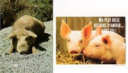 """Animaux Cochons  Cochon """"Souvenir De Corse """"     Humour """"Ma Plus Belle Histoire D'amour...c'est Toi ! """" Lot De 2 TBE - Cochons"""