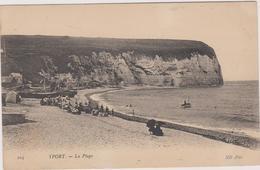 76  Yport La Plage - Yport