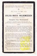 DP Sylvia M. Wildemeesch ° Koolkerke 1873 † Damme 1911 X Theophiel Van Wonterghem / Wildemees Wildemeers Wildemeersch - Images Religieuses