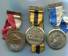 X418 LOT DE 3 MEDAILLES DE MARCHE POPULAIRE SUISSE MEDALS SWITZERLAND - Médailles & Décorations