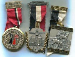 X421 LOT DE 3 MEDAILLES DE MARCHE POPULAIRE SUISSE MEDALS SWITZERLAND - Médailles & Décorations